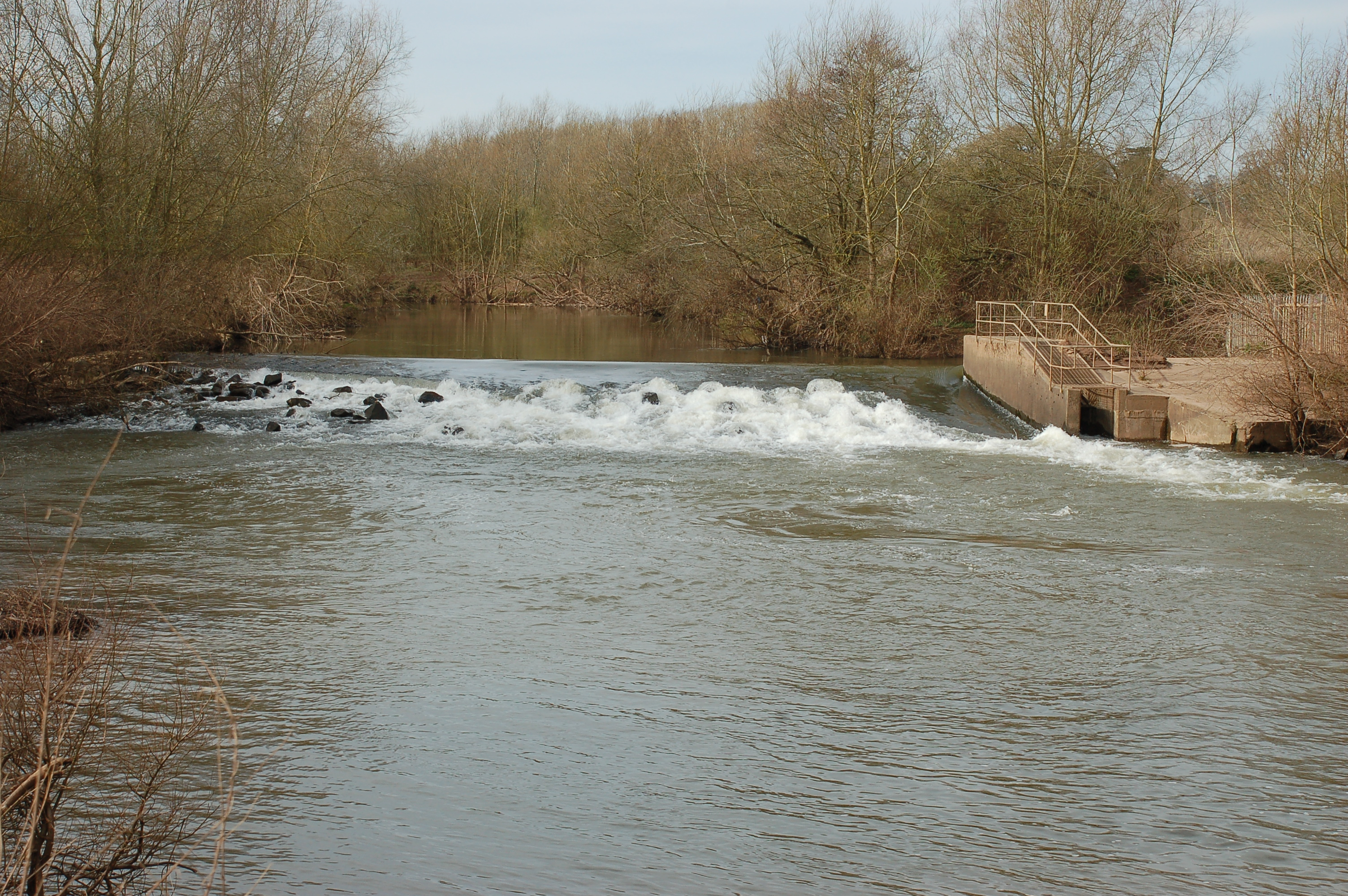 Work will be undertaken on 7 weirs to enable fish to move more easily up the river. Credit: Canal and River Trust.