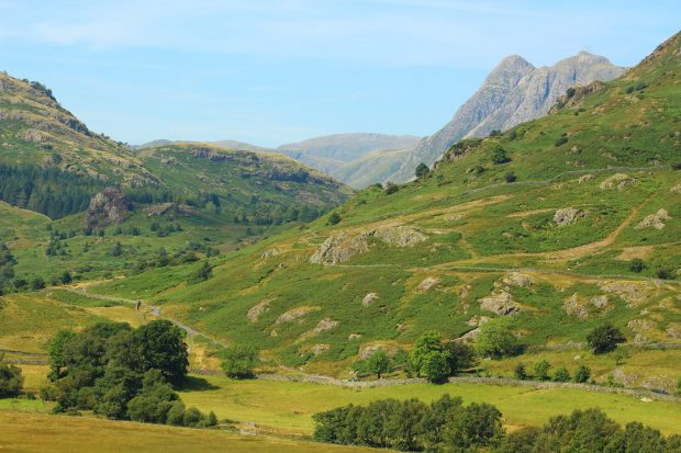 Beautiful Langdale Fell showing signs of recovery