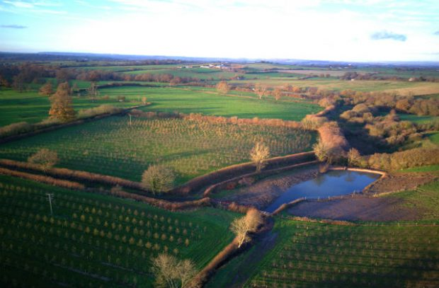 Somerset fields with a water feature helping to prevent flooding