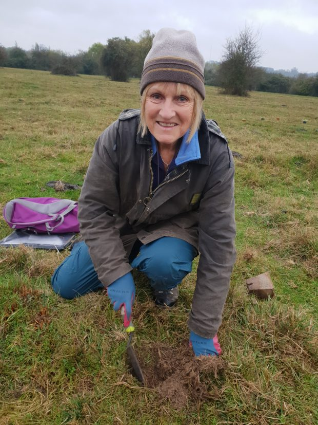 A Natural England expert planting devil's-bit scabious in a field