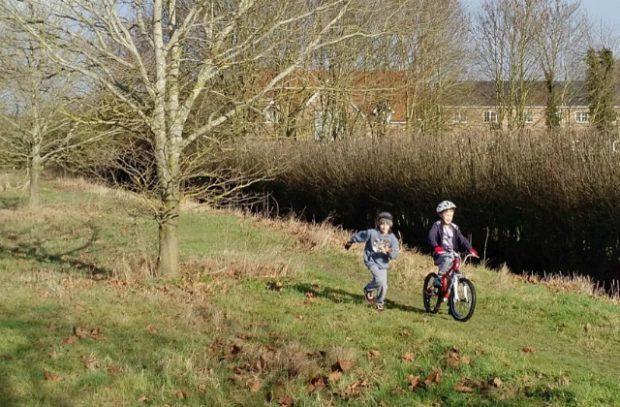 An image of two children, one on a bicycle, playing in a field with a tree in it.