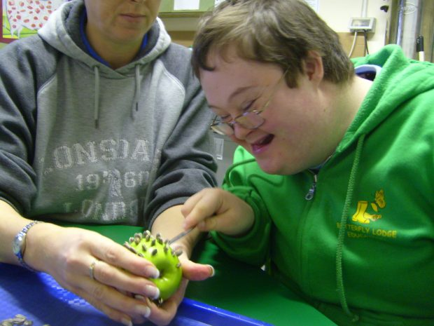 a boy in a green top looks at an apple