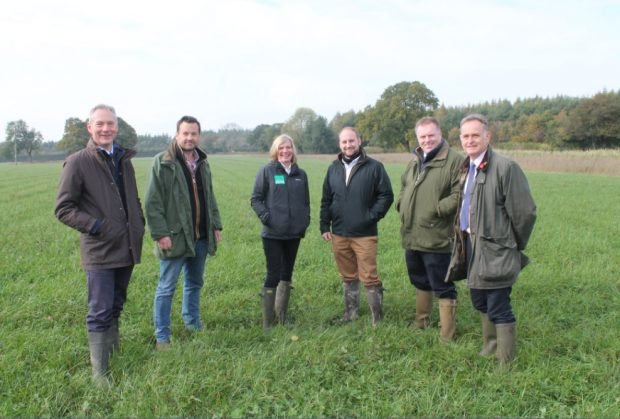 An image of Marian Spain and colleagues in a field