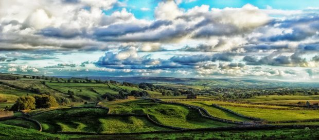 image of the Yorkshire Dales, including drystone walls and rolling lush green fields.